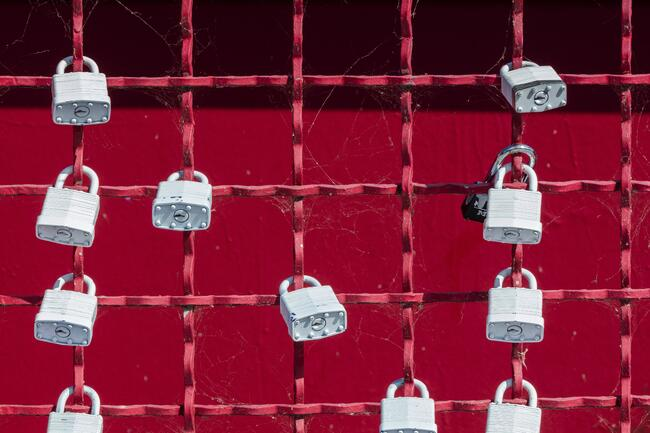 security is vital for a website's success